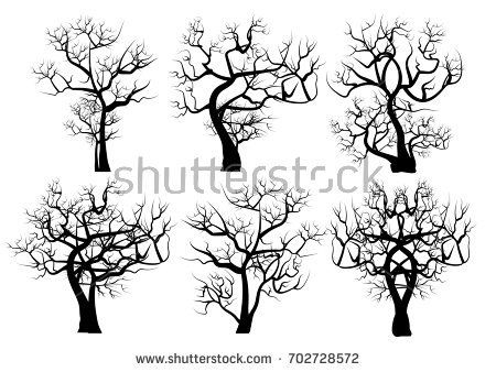 Image Result For Weeping Willow Trees Dead Weeping Willow Weeping Willow Tree Willow Tree