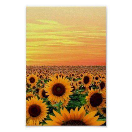 sunflower field poster - decor diy cyo customize home