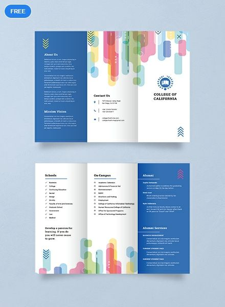 Free Modern College Brochure Template Word Doc Psd Indesign Apple Mac Pages Illustrator Publisher College Brochure Brochure Design Template Brochure Template