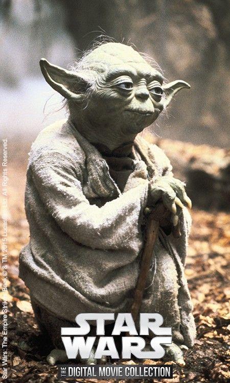 Star Wars Movies Digital Collection Star Wars Star Wars Yoda Yoda Quotes Star Wars