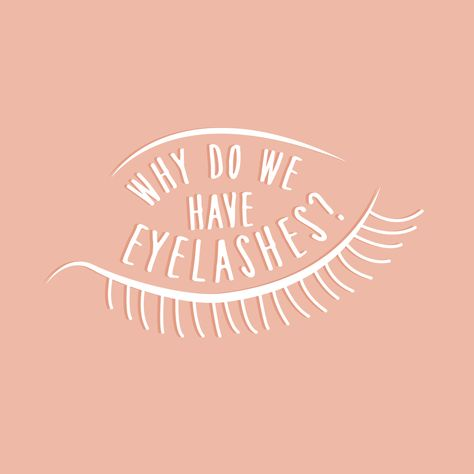 OUR EYELASHES protect our eyes from dirt and dust and they help to shield them from the bright light of the sun! (But that doesn't mean you should leave your sunglasses at home.)