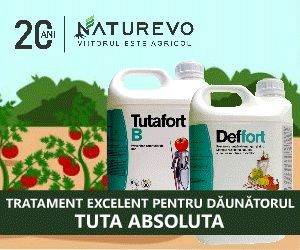 Insecticide naturale