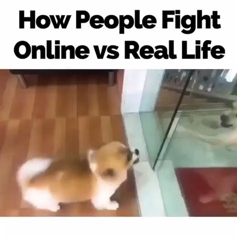 r/MadeMeSmile - How people fight online vs real life