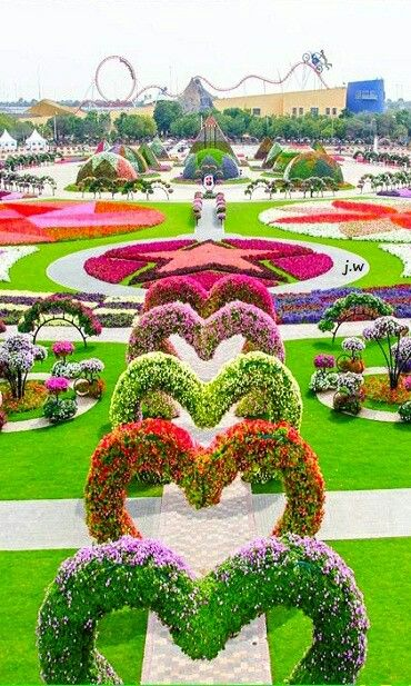 Dubai Miracle Garden, 45 million flowers in the desert. 275 m circled area next to a giant roundabout.