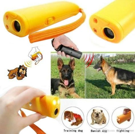7 85 Afraid Bad Dogs Ebay Home Garden Dog Training Dog