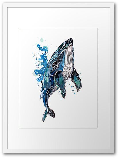 Blue Humpback Whale Framed Print By Zeichenbloq Framed Art Prints Art Prints Art