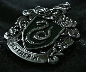 Find images and videos about harry potter, hogwarts and slytherin on We Heart It - the app to get lost in what you love. Hogwarts, Slytherin Harry Potter, Slytherin House, Slytherin Pride, Harry Potter Houses, Albus Severus Potter, Draco Malfoy Aesthetic, Slytherin Aesthetic, Bellatrix Lestrange Aesthetic