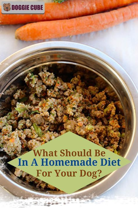 What Should Be In A Homemade Diet For Your Dog Doggie Cube