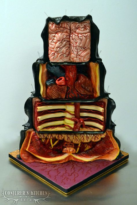 The Dissected Cake, A Cake With an Anatomical Interior of Bones and Organs - Halloween Cakes - Torten