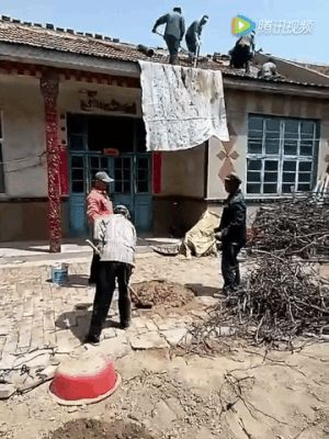 The Chinese Mortar Catapult Best Funny Pictures Funny Gif Funny Pictures