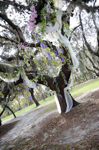 Wedding Ceremony Tree Decorated Fabric Flowers Decorations Decor Site Decorat