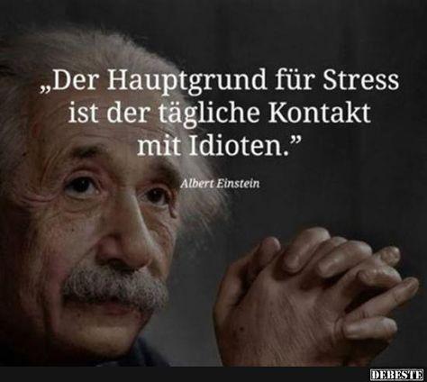 Der Hauptgrund von Stress ist der tägliche Kontakt mit Idioten.. | Lustige Bilder, Sprüche, Witze, echt lustig