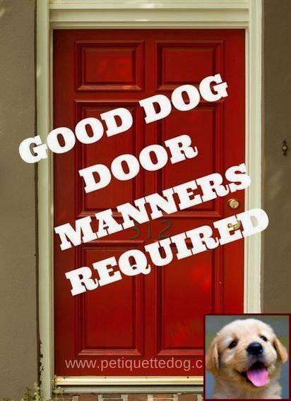 Diy Dog Indoor Kennels Indoor Dog Kennel Diy Dog Kennel Dog
