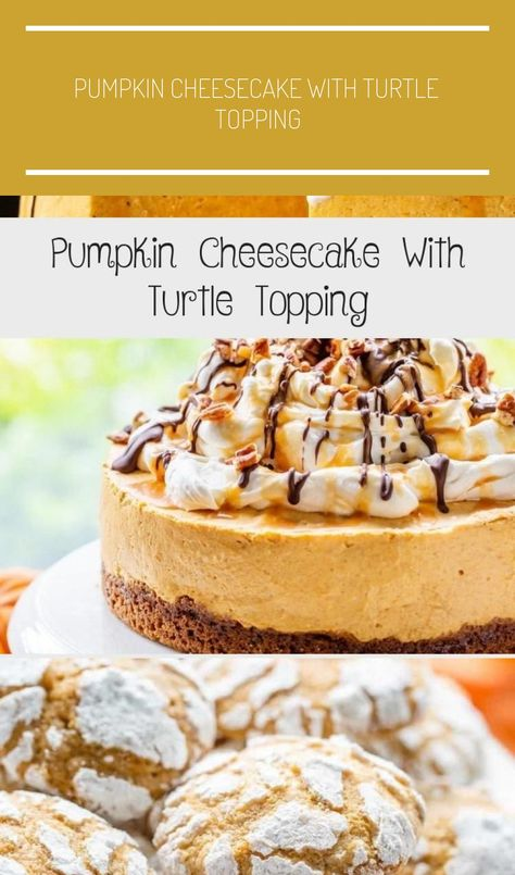 Light and creamy Pumpkin Cheesecake with a no bake filling, a ginger snap crust and a decadent Turtle Topping. #savingroomfordessert #pumpkincheesecake #pumpkindessert #cheesecake #pumpkin #turtlecheesecake #nobakecheesecake #holidaydessert #holidays #thanksgiving #PlainCheesecake #CheesecakeRicetta #CheesecakeCake #VanillaCheesecake #MiniCheesecake #pumpkin pie spice recipe without ginger Pumpkin Cheesecake With Turtle Topping - Cake