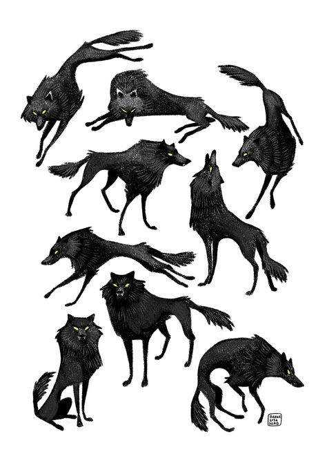 A wolf character in several poses, digital illustration in Photoshop Character Design Challenge, Character Design Animation, Fantasy Character Design, Blond Amsterdam, Wolf Illustration, Animal Sketches, Animal Drawings, Wolf Drawings, Wolf Poses