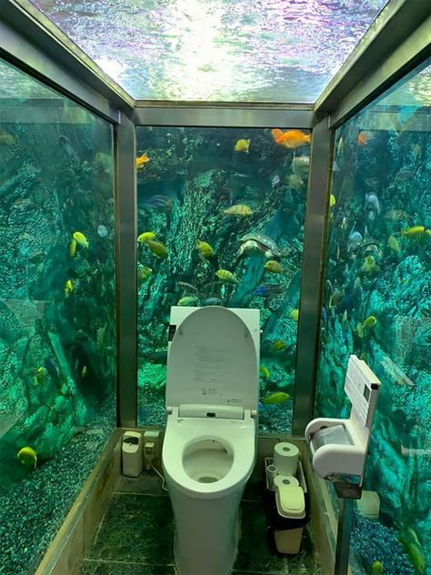 If you love exotic fish and don't mind hundreds of them eyeballing you while you answer nature's call, you'll probably love using this unique aquarium toilet in Akashi, Japan. Aquarium Design, Home Aquarium, Aquarium Fish Tank, Aquariums Super, Amazing Aquariums, Tanked Aquariums, Aquarium Architecture, Architecture Design, Beautiful Architecture