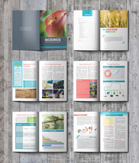 Carefully handcrafted textbook template created with Adobe - histogram template