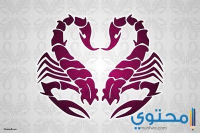 صور مكتوب عليها محمد صلى الله عليه وسلم موقع محتوى Scorpio Tattoo Virgo And Scorpio Virgo Constellation Tattoo