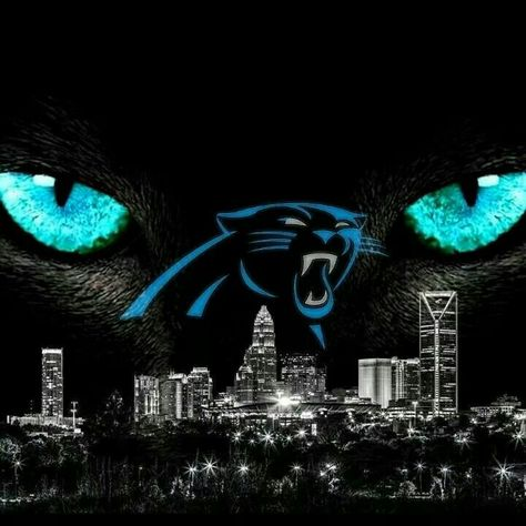 Love the glowing Panther eyes in the skyline! Keep Pounding!