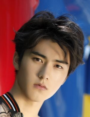 Liu Yi Chang | Asian actors, Actors, Actors & actresses