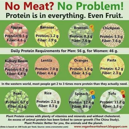 f81440f88a55477f27ff1eb2fd0a62de - How To Get All Your Amino Acids As A Vegan