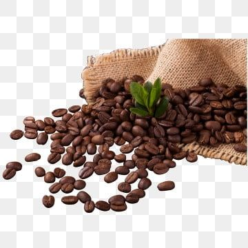 เมน กาแฟ เมน ภาพต ดปะ คาเฟ กาแฟภาพ Png และ เวกเตอร สำหร บการดาวน โหลดฟร Coffee Png Coffee Fonts Coffee Vector