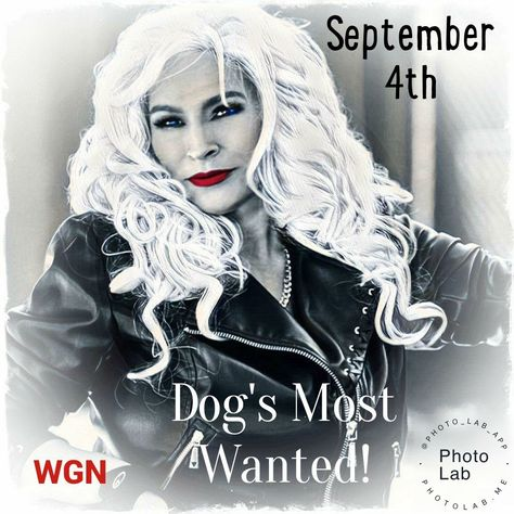 To view keyboard shortcuts, press question mark  View keyboard shortcuts  Tweet  Conversation    Pamela Chaney  @PamelaC120369  SHE DID WHAT SHE LOVED TILL HER LAST BREATH     HUNTING DOWN FUGITIVES AND GIVING THEM A CHANCE AT A NEW #DogsMostWanted