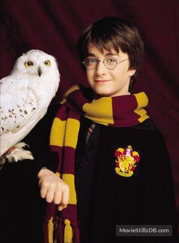 Harry Potter Und Der Stein Der Weisen Harry Potter Stein Weisen Harry Potter Film Harry James Potter Harry Potter Bilder