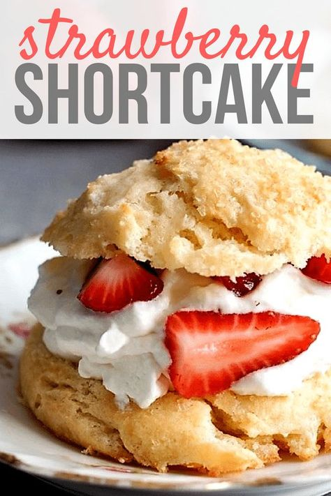 even think about going through summer without making this classic strawberry shortcake recipe! Our scrumptious Homemade Strawberry Shortcake biscuits are filled with fluffy whipped cream and sweet juicy strawberries that will make you swoon wit Köstliche Desserts, Delicious Desserts, Pretzel Desserts, Summer Dessert Recipes, Cheesecake Desserts, Homemade Desserts, Homemade Strawberry Shortcake, Shortcake Recipe Easy, Strawberry Shortcake Recipe With Biscuits
