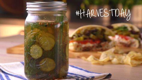Delicious DIY Dill Pickles