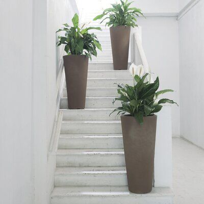 Sol 72 Outdoor Delano Plastic Pot Planter In 2020 Plant Office Design Planters Planter Design