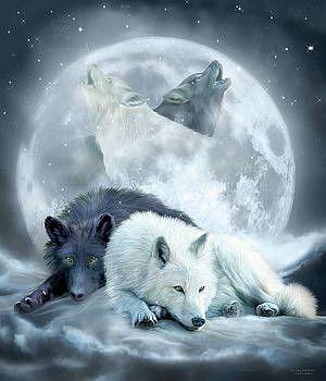 Carol Cavalaris Yin Yang Wolf Mates 2 Wolf Mates Yin Yang Wolf Shadow Wolf