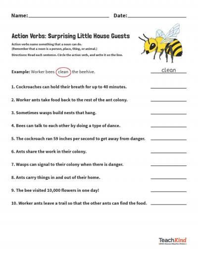 Grammar Packet Compassionate Nouns And Verbs Worksheets Peta Nouns And Verbs Worksheets Nouns And Verbs Nouns Identifying nouns and verbs worksheets