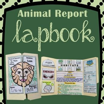 elyse sewell 4 - click click flash Pinterest - animal report template
