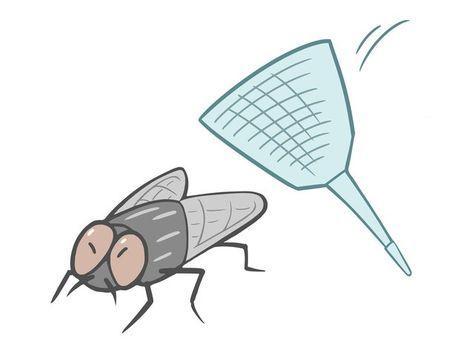 寝てるときに耳元で ブ ン と飛びまわる蚊を 確実に退治する方法
