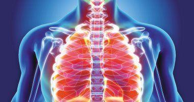 أسباب التهاب القصبة الهوائية الجرثومي عند الأطفال اليوم السابع القصبة الهوائية هو جزء مهم من نظام مجرى الهوا Pulmonary Fibrosis Pulmonary Natural Treatments