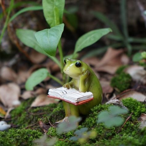 A set Miniature Small Frog and Mouse Reading Book , Animal Figurines Fairy Garden Supplies Terrarium Accessories DIY Miniature Garden Sapo Frog, Photowall Ideas, Frog Pictures, Random Pictures, Fairy Garden Supplies, Gardening Supplies, Fairy Tree, Book Fairy, Cute Frogs
