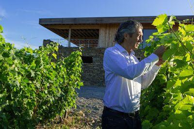 Portrait de Gérard Bertrand, le bio-man du Languedoc