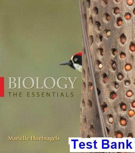Pin On Test Bank Download