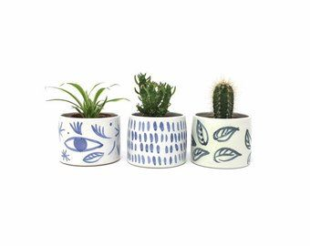 4 Inch Pots For Plants Etsy With Images Potted Plants Pot Planter Pots