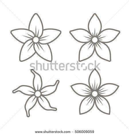 Jasmine Flower Sketch Flower Drawing Flower Sketches Flower Icons