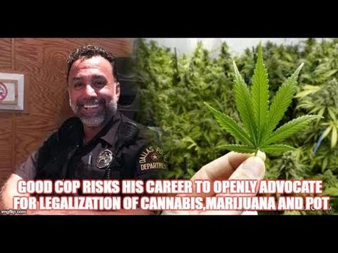 Image result for Good Cop Risks His Career to Openly Advocate for Legalization of Cannabis