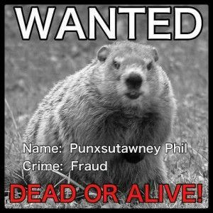 Pin By Bonnie Valentine Edwards On Groundhog Day In 2021 Punxsutawney Phil Groundhog Day Phil