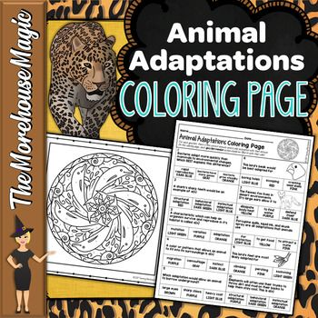 Animal Adaptations Science Color By Number Or Quiz By The Morehouse Magic Teachers Pay Teachers Animal Adaptations Adaptations Science Adaptations