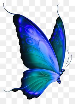 Butterfly Png Butterfly Art Painting Butterfly Images Clip Art Butterfly Clip Art