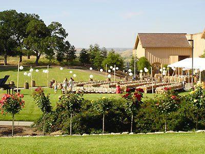 July Wedding In The Vineyard Pomarjunction Winery Weddings Pinterest And