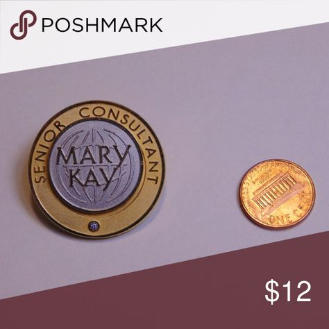 Mary Kay Senior Consultant Pin Gold and silver Silver part moves Mary Kay Accessories