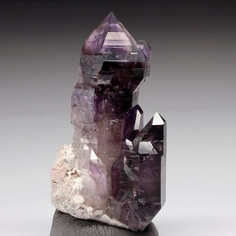 Amethyst Scepter (Specimen and photo by