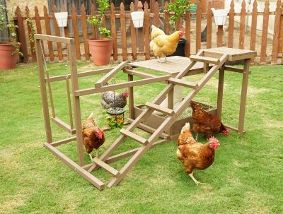 Coops Amp Feathers Chicken Activity Center For 6 Chickens Pet Chickens Chickens Backyard Diy Chicken Coop