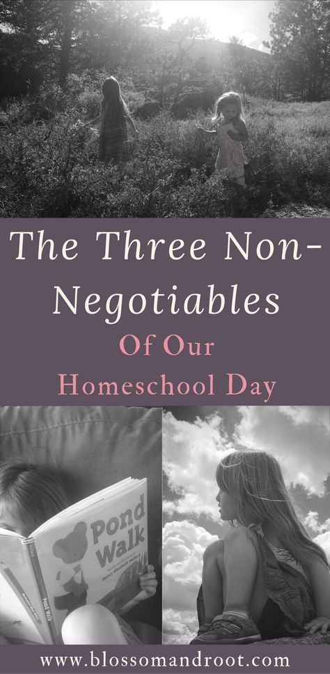 The Three Non-Negotiables of Our Homeschool Day